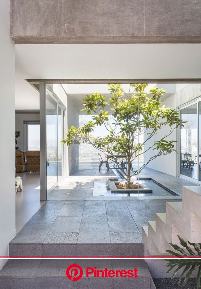 T38 studio designs grid-based HDJ89 residence in tijuana | Indoor courtyard, Concrete house, Houses in mexico